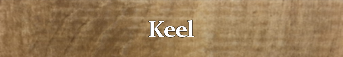 Keel Rigid Plank 20 MIL Commercial Flooring