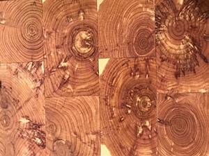 Old-Wood-Cedar-End-Grain-Hardwood-Flooring