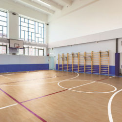 Sports Floor Plus