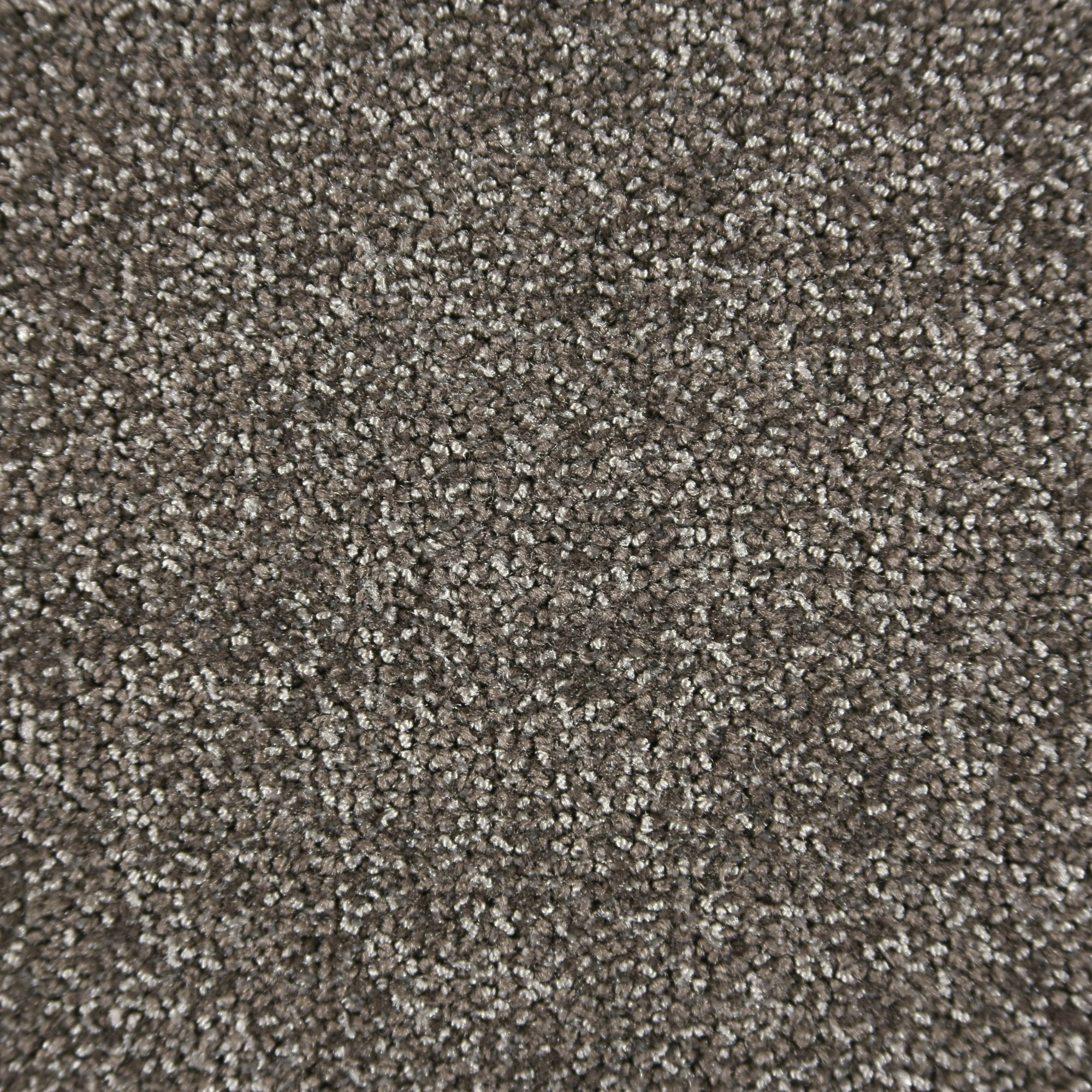 Loft (1008-C2695)