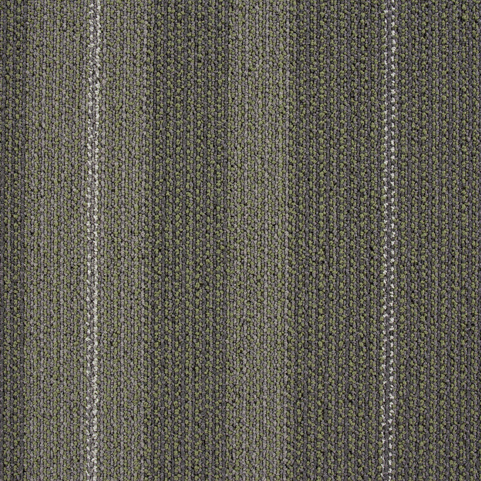 Peta (1032-B9741)