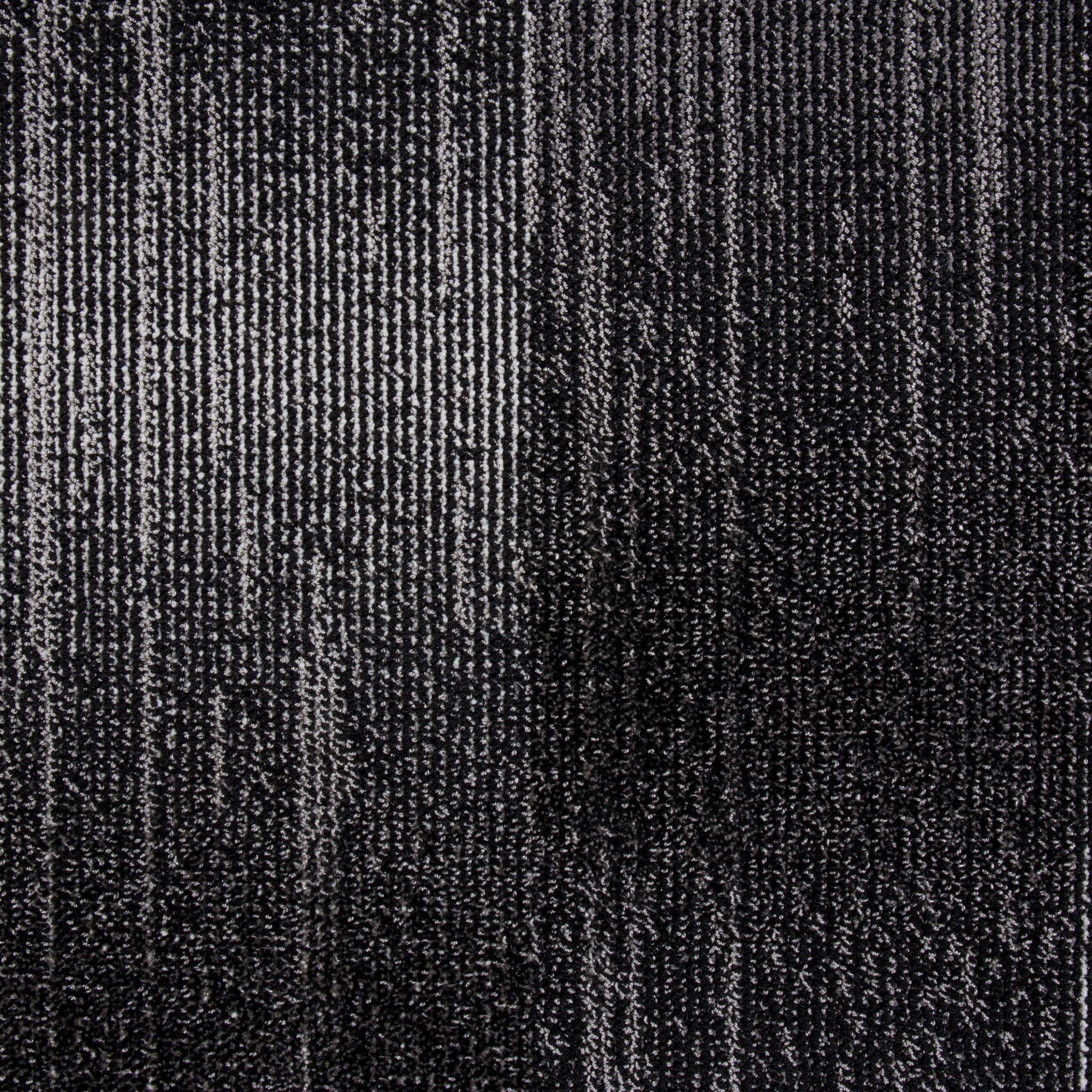 Timewarp (2065-F1695)